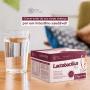 Lactobacillus Plus - Mix de pré e probióticos